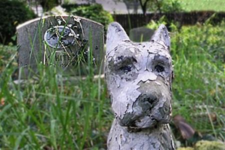 В Германии появились первые общие кладбища для людей и животных