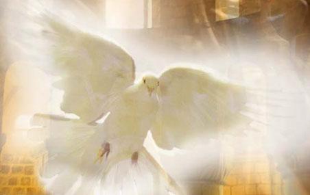 Православные отмечают день Святого Духа