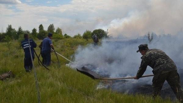 """Пожар в """"Чернобыльской пуще"""" локализован"""