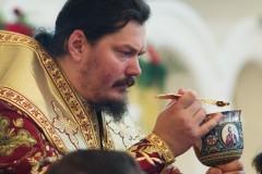 Епископ Корсунский Нестор: Православные и католики должны избавляться от недоверия и подозрения
