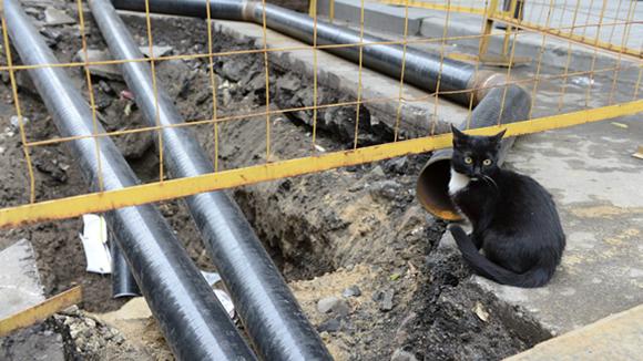Депутаты Госдумы предлагают проверить управляющие компании, не проводившие вовремя капитальный ремонт жилых домов