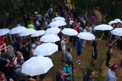 Митинг на «Торфянке» 9 июля: как это было