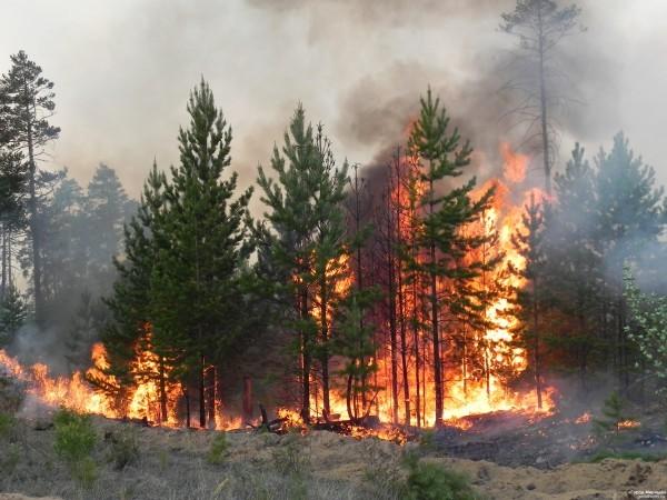 Бурятия задыхается в дыму от пожаров