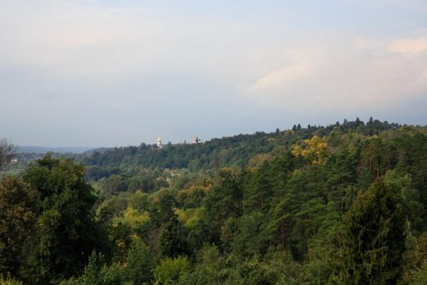Вид на Саввино-Сторожеский монастырь
