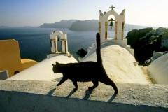 Круглое не резать, есть земельку, читать заклинания – как бороться с «православными» суевериями?