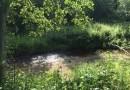 Архангелово чудо в Архангельской области