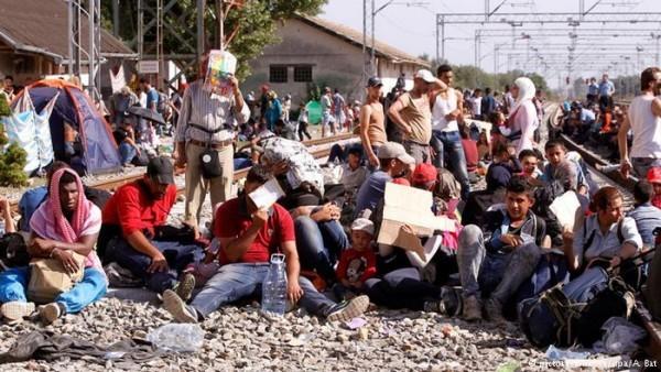 Венгрия строит заграждения на границе с Хорватией, чтобы не допустить переход беженцев