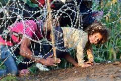 Кто бежит в Европу