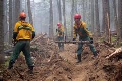 Лесные пожары в Бурятии полностью потушены