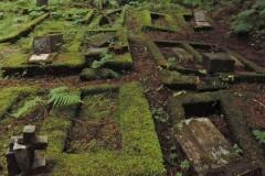 В третий раз за последние два месяца вандалы осквернили русское православное кладбище в Ситке
