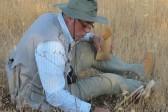 Сирийским ученым удалось спасти хранилище растений библейских времен