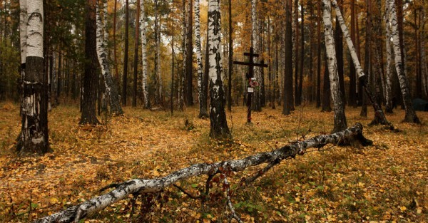 Поросенков Лог. Фото: chapnin.ru