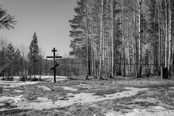 Поросёнков лог, где найдены екатеринбургские останки. Фото Анны Гальпериной