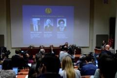 Нобелевскую премию по медицине дали за методы лечения паразитов и малярии