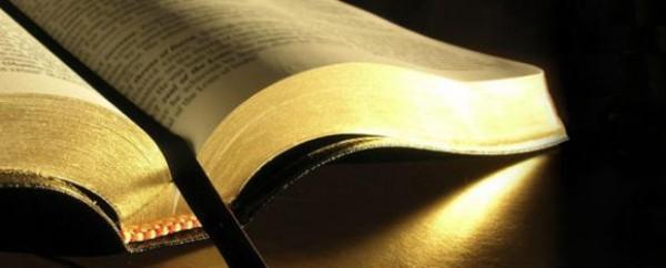 Теология стала научной специальностью