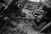 В России будут бороться с фальсификацией военной истории