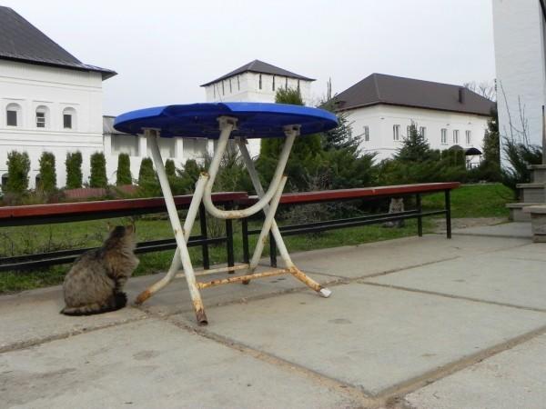 Фото: vilgun.livejournal.com