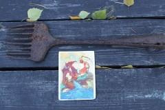 Рыболовная снасть монахов XVII века найдена в брянском заповеднике