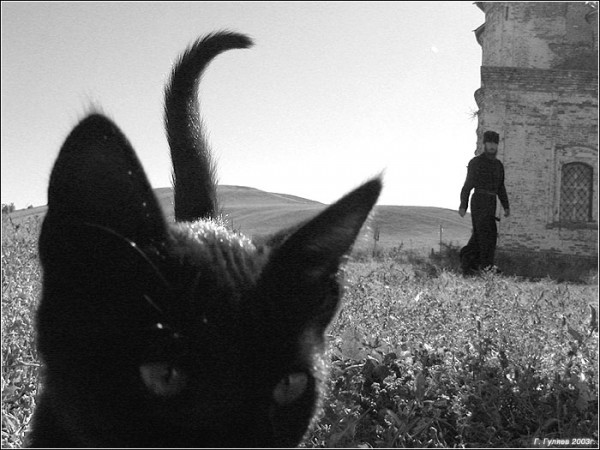 Фото: photohost.ru