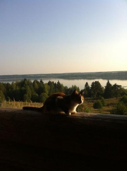 Волга и Масяня