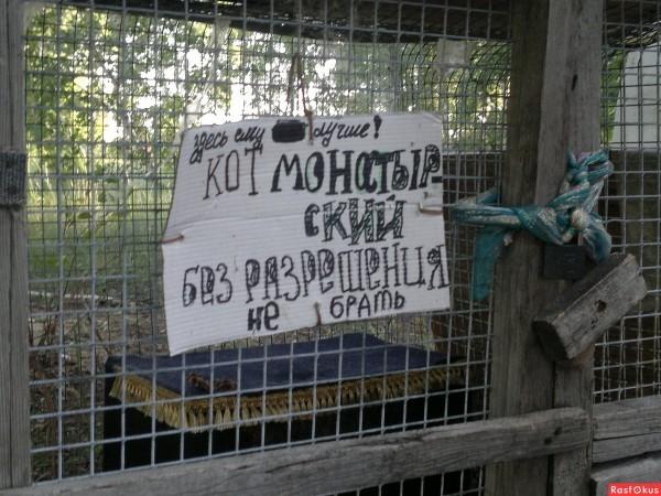 Кота в клетке не было... Ачаирский монастырь, Омская область. Фото: Rnrasfokus.ru