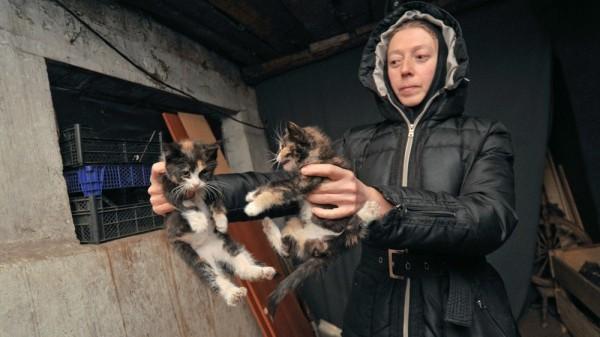 Фото: Михаил Кирьянов/riavrn.ru