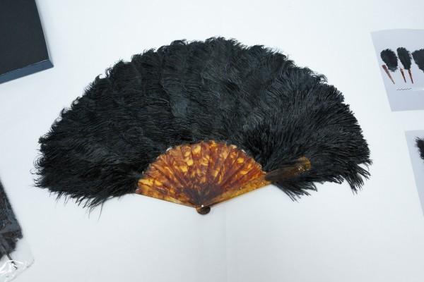 Поделка из перьев страуса 47