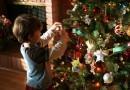 Таганрожцам предлагают взять из детдома ребенка на Новый год