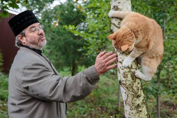 «Нам людьми некогда заниматься, а вы – кошками…»