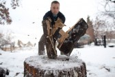 Мишка-Флинт и авва Дорофей