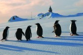 Крещение в Антарктиде