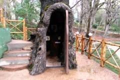 В Грузии внутри многовекового дуба оборудовали молельню