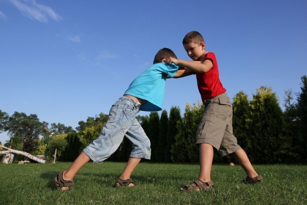 Re: dreamtime On 2013-02-18, at 12:49 PM, Milne, Vanessa wrote: Photo children fighting dreamstime