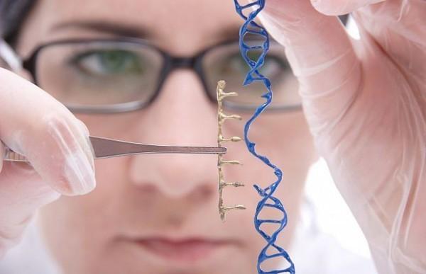 Кто сказал, что ДНК – это святая святых?