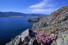 Крестный ход вокруг Байкала продлится полтора года