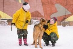 """""""Солнечная"""" профессия – людей с синдромом Дауна обучают уходу за собаками (+видео)"""