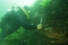 В акватории Стамбула под водой обнаружены руины монастыря