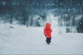 Памятка ребенку: что делать, если ты заблудился в лесу?