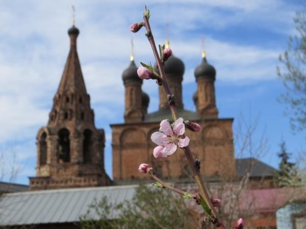 Персик в цвету – о Субботе Покоя: под горестные вопли адских стражей…