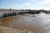Подтоплено более 8 тысяч жилых домов в 119 населенных пунктах России