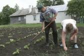 Во время кризиса москвичи рассчитывают на родственников и огороды