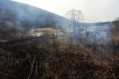В Росгидромете предупредили об опасности повторения пожарного лета 2010 года