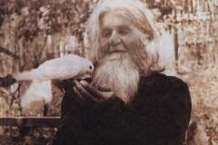 Три истории помощи преподобного Амфилохия Почаевского