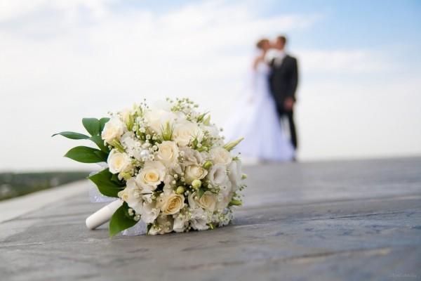 В Госдуме предлагают проверять способность женихов и невест к деторождению до свадьбы