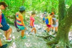Общественный совет Минобрнауки заявил о необоснованном закрытии детских лагерей