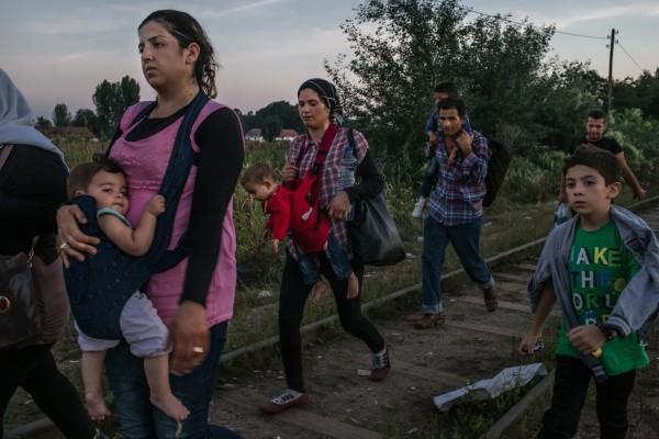 ©Maurício Lima/www.pulitzer.org Ружин Шейхо из Сирии (слева) несет свою дочь Видад, а ее сын Наби (справа) шагает вместе с другими беженцами вдоль железнодорожных путей до пересечения границы с Венгрией в сербском Хоргосе.