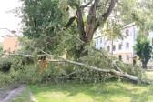 Ураган сорвал кресты с храма в Подмосковье