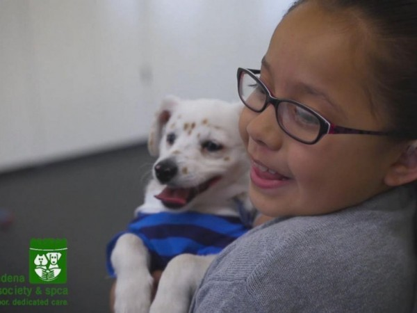 Глухая девочка обучила глухого щенка командам на языке жестов