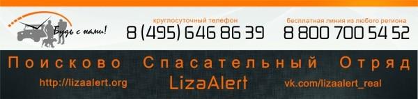LizaAlert