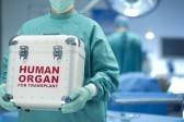 Минздрав будет размещать информацию о донорстве в СМИ